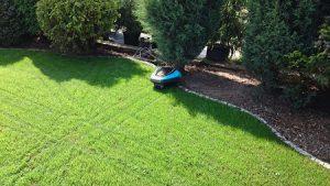 siatka na krety pod trawnik