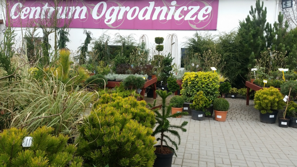 Centrum Ogrodnicze Kubscy