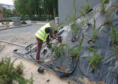 Sadzenie krzewów i drzew.
